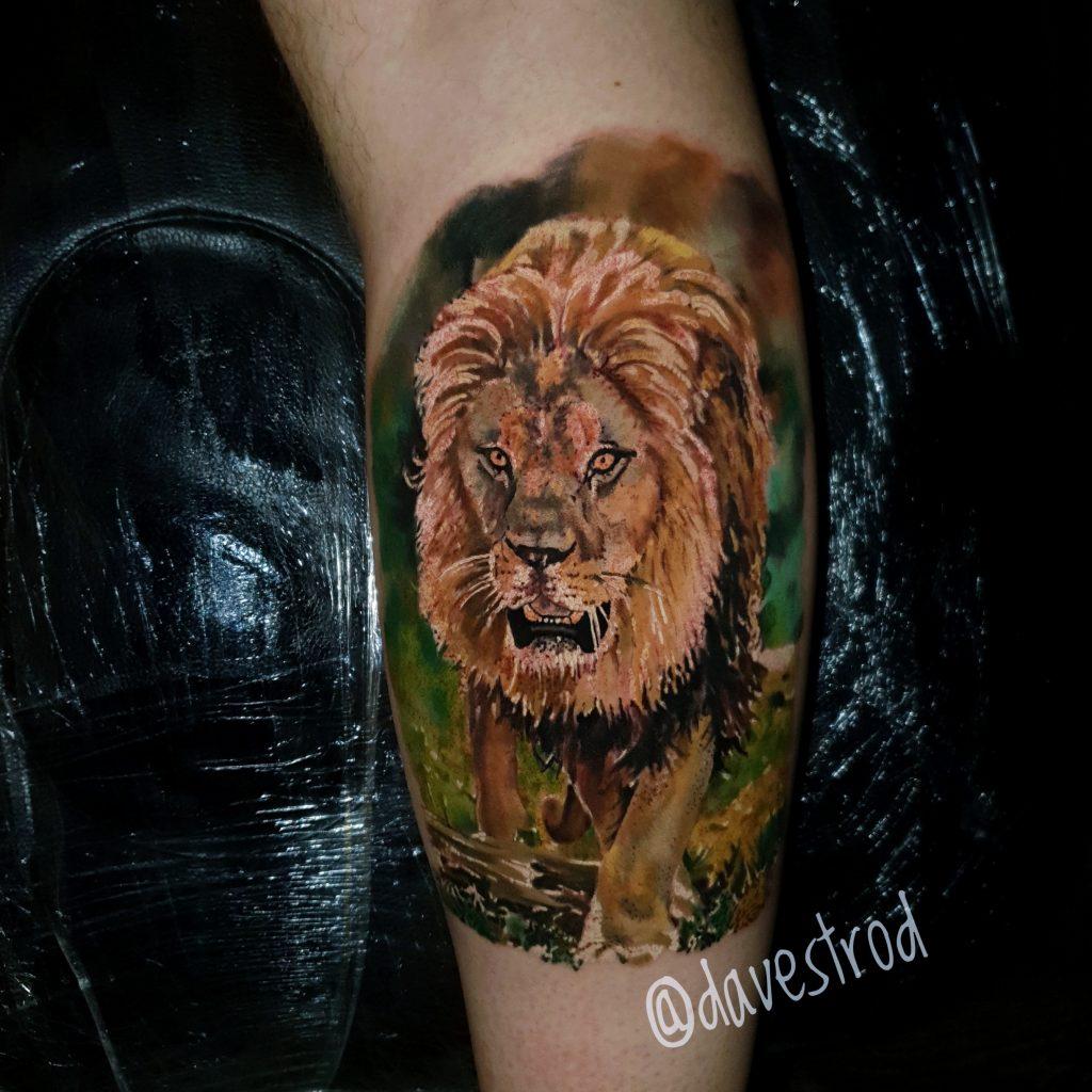 animal tattoo lion colour